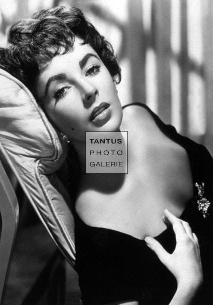 taylor-low